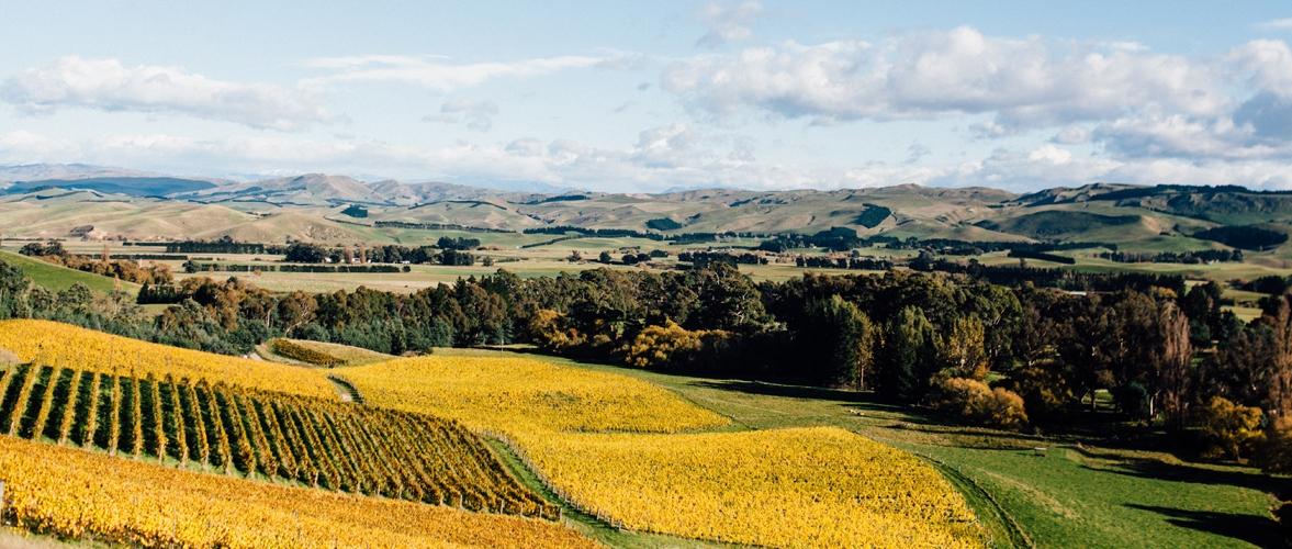 Waipara Valley Wineries